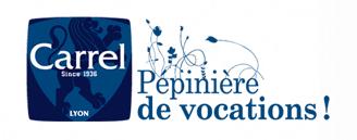 Logo - Institut Carrel - Lyon (69)